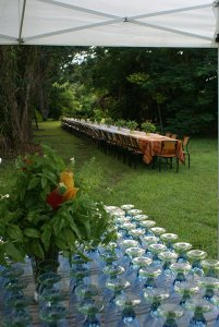 The brunch setting
