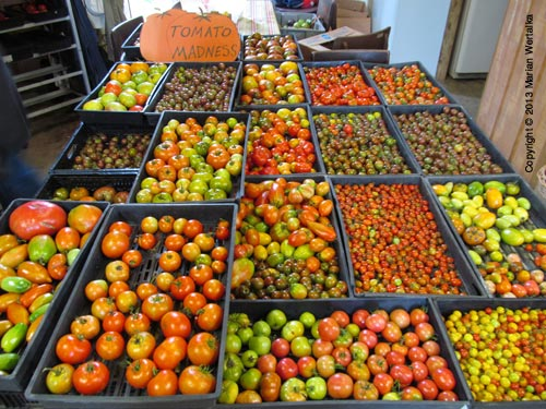 Heirloom tomatoes at season's peak